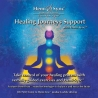 HEALING JOURNEYS SUPPORT-guiado en inglés